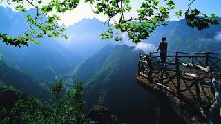 Vistas da Ilha da Madeira
